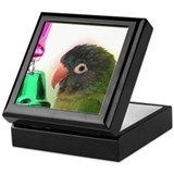 Blue Crowned Conure Keepsake Box II