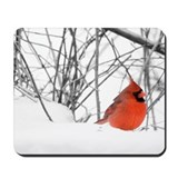 Red Cardinal Mousepad