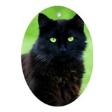Beautiful Black Cat Oval Ornament
