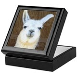 Cute Animal humor Keepsake Box