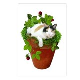 Flowerpot Cat Postcards (Package of 8)