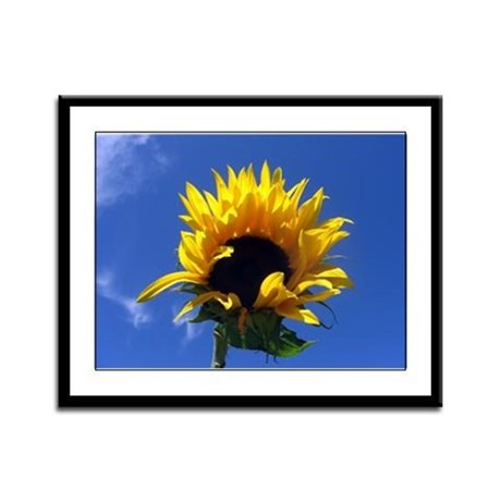 Sunflower Sunrise Framed Panel Print
