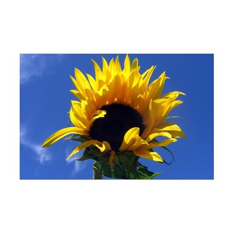 Sunflower Sunrise Mini Poster Print