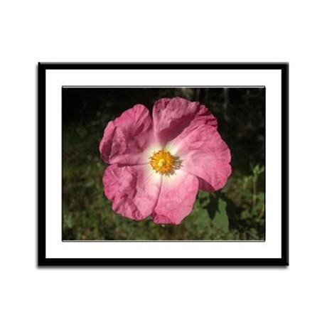 Pink Flower Framed Panel Print
