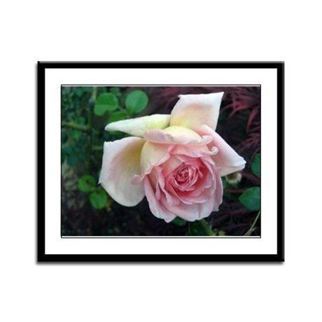 Birdlike Rose Framed Panel Print