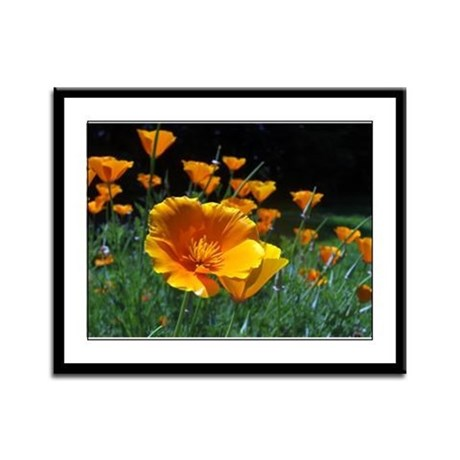 Hello Poppies Framed Panel Print