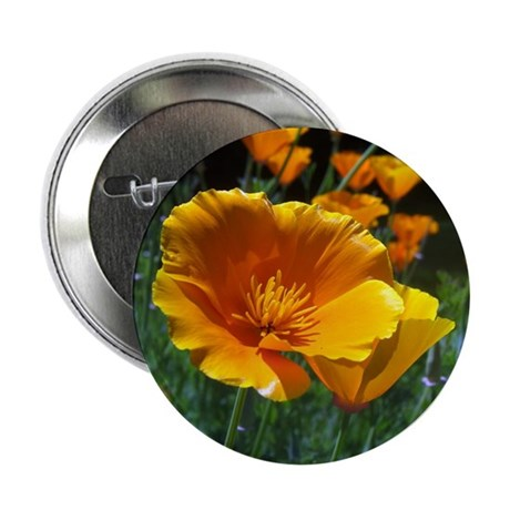 "Hello Poppies 2.25"" Button"