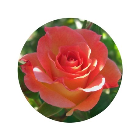"Rose Cup 3.5"" Button"