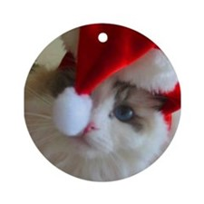 Ragdoll Cat Christmas Ornament (Round)