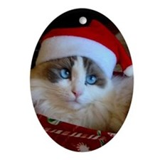 Ragdoll Cat Christmas Oval Ornament
