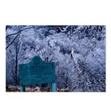 Funny Ice storm Postcards (Package of 8)