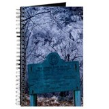 Cool Ice storm Journal