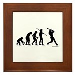 Baseball Evolution Framed Tile
