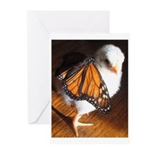 Unique Easter chick Greeting Cards (Pk of 10)