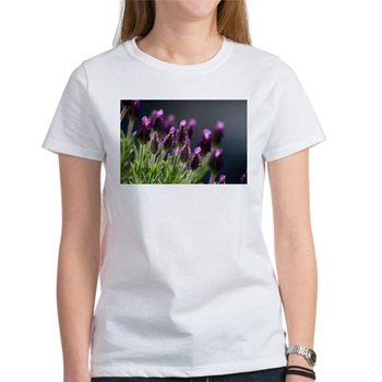 buy Lavender T-shirt