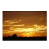 Texas Gold Sunset Postcards (Package of 8)