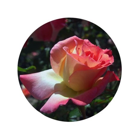 "Dancing Rose 3.5"" Button"
