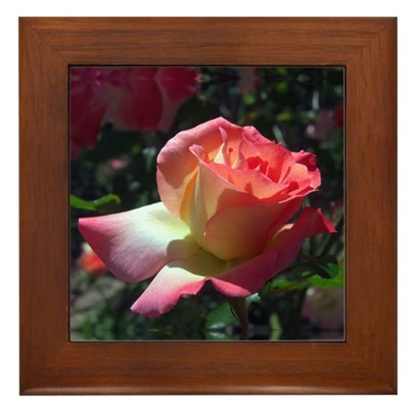 Dancing Rose Framed Tile