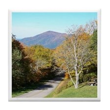 Autumn Drive Tile Coaster