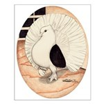70s Indian Fantail Pigeon Small Poster