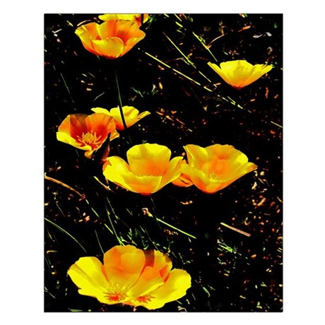 Poppies in a Row Small Poster