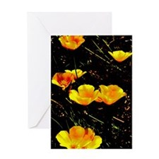 Poppies in a Row Greeting Card