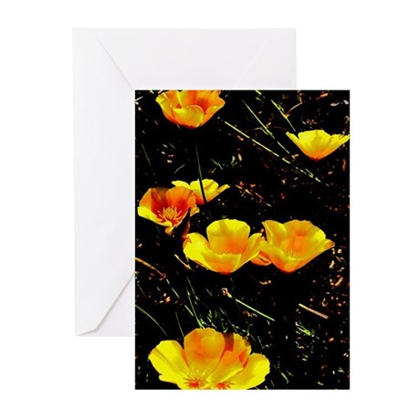 Poppies in a Row Greeting Cards (Pk of 10)