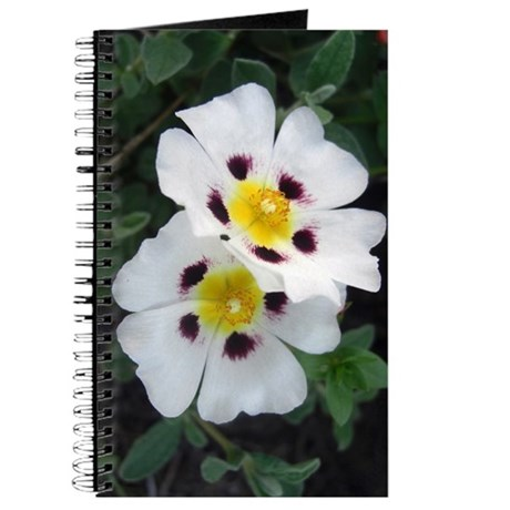 Two White Flowers Journal