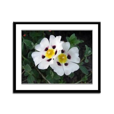 Two White Flowers Framed Panel Print
