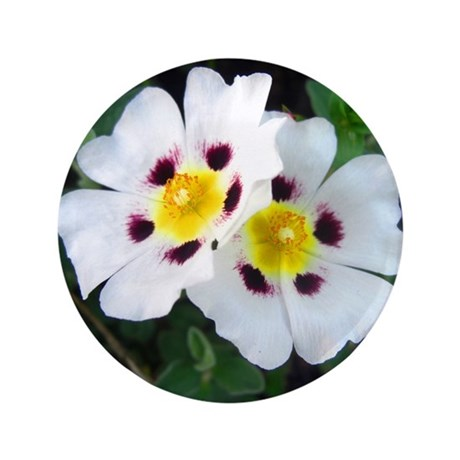 "Two White Flowers 3.5"" Button"