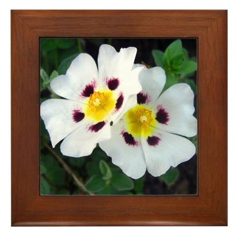 Two White Flowers Framed Tile