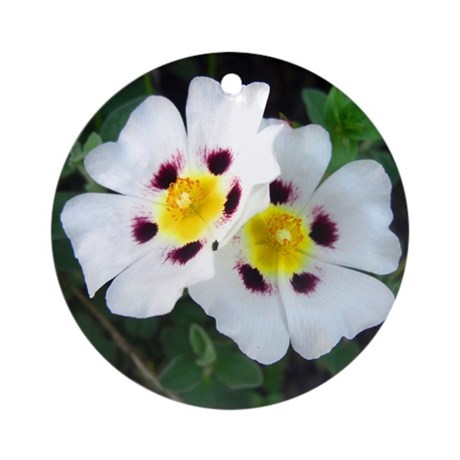 Two White Flowers Ornament (Round)