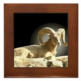 Bighorn Sheep Framed Tile