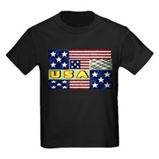 U.S.A. spring quilt T
