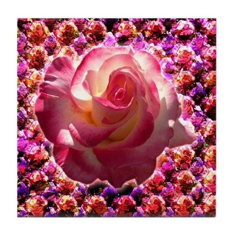 Blushing Rose Tile Coaster