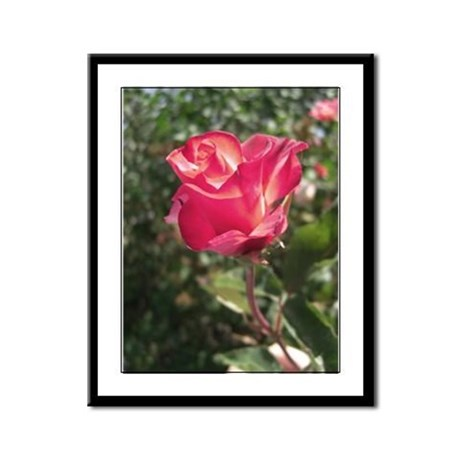 Elegant Rose Framed Panel Print