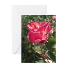 Elegant Rose Greeting Card