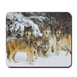 """Wolf Pack"" Mousepad"