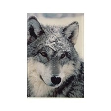 """Wolf"" Rectangle Magnet"
