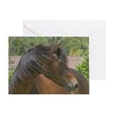 Greeting Card-head shot morgan mare