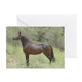 Greeting Card-filly yellow flowers Morgan