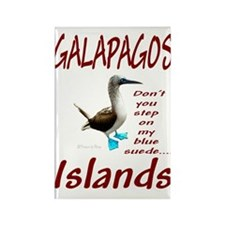Galapagos Islands- Rectangle Magnet (10 pack)