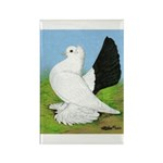 Russian Pigeon Rectangle Magnet (10 pack)