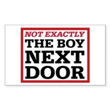 Dexter: Boy Next Door Rectangle Sticker 10 pk)