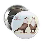 Shakhsharli Pigeon Standard 2.25