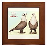 Shakhsharli Pigeon Standard Framed Tile