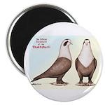 Shakhsharli Pigeon Standard Magnet