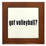 got volleyball? Framed Tile