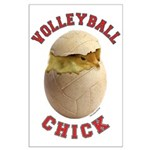Volleyball Chick 2 Large Poster