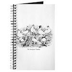 Shortface Tumbler Pigeons Journal